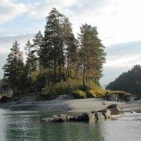 Горный Алтай. Река Катунь :: Ольга Иргит