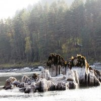 На реке :: Ольга Иргит