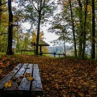 золотая осень :: Anrijs Slišāns