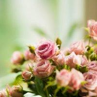 Цветы :: Руслан
