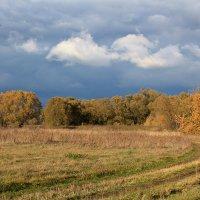 Я люблю тебя осень за красу небывалую... :: Эркин Ташматов