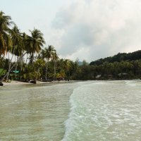 кокосовый рай.... :: Juliya Gapchuk