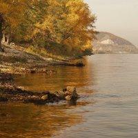 Осень на Волге :: Александр Попов