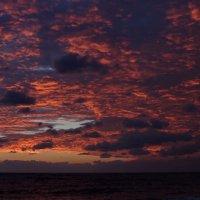 Загоралось небо... :: Виолетта