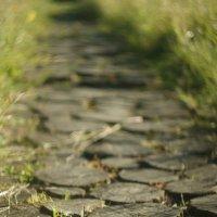 Дорога в баньку :: Анна Агеева