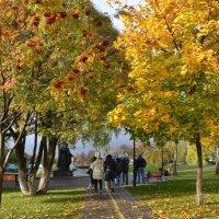 Золотая осень в Сергиев Посаде :: demyanikita