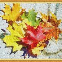 Разнообразие красок осени :: Лидия (naum.lidiya)
