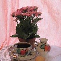 Чашка крепкого чая осенним днем :: Маера Урусова