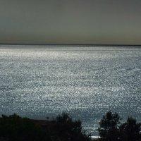 Ночное море :: Сергей Мышковский