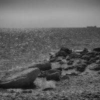 Дети и море 2 :: марк