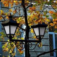 Осенний наряд фонарей :: Ольга Голубева