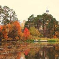 Осень :: Галина .