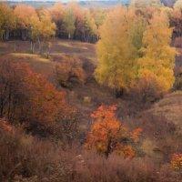 Осенняя походная :: Valery Penkin
