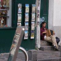 Я играю на гармошке(французской) :: Михаил Сбойчаков