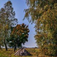 в деревне :: Ксения Баркалова