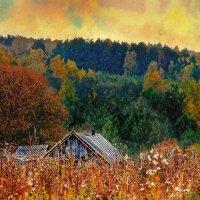 красочный домик :: Андрей Полозов