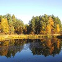 Середина осени :: Андрей Снегерёв
