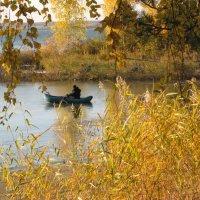 Осень :: ВЕРА КРУГЛОВА