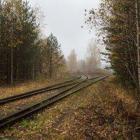 Налево пойдешь.... :: Sergey Apinis