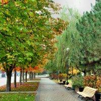 Осенняя аллея на набережной... :: Тамара (st.tamara)