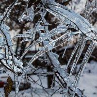 Лёд :: Nn semonov_nn