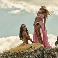 Дамы с собачкой :: Sergey Lexin