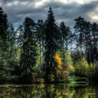 лес и вода... :: Евгений Трофименко