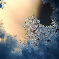 зимний декор :: Гитас Тумуль