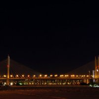 Большой Обуховский мост (вантовый мост) :: Елена Сазонтова