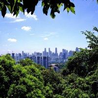 Тает в дымке город ..... Сингапур :: михаил кибирев