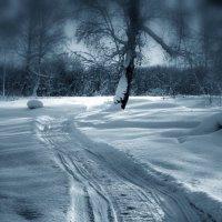 Зима. :: Дмитрий Арсеньев