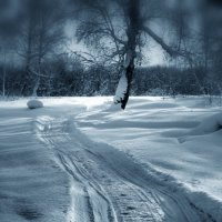 Зима. :: Радмир Арсеньев