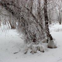 Наступили холода :: Dr. Olver