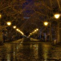 Ночь, улица, фонарь :: Владислав Положай