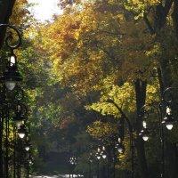 Осенний парк :: john dow