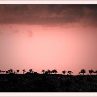 Мир в розовых очках... :: Александр Константинов