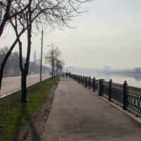 Ранняя весна :: Станислав Ковалев
