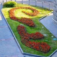 Сад Храма Христа Спасителя :: Дмитрий Каменский