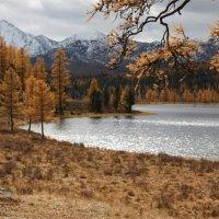 Озеро на перевале Улаган. :: Oleg Kulakov