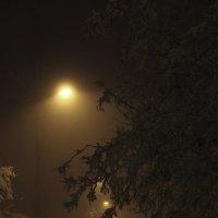 Туманная аллея :: Света Солнцева