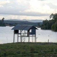 Обзор, даже в наводнение :: Ekaterina Shchurina