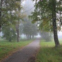 Туманное утро в Сясьстрое :: Марина Иванова