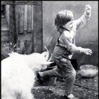 Идёт коза рогатая... :: Леонид Школьный