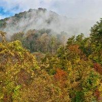 Осень в горах :: Petr Shostak