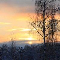 Закат солнца в зимний вечер :: Наталья Баранова