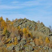 и на камнях растут деревья ... :: Maxxx©