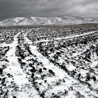 Первый снег. :: Олег Грачёв