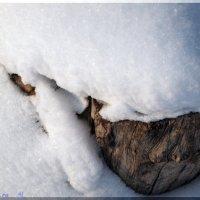 снегозмий пожирающий :: А Б