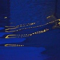 огни в воде :: Зоя Яковлева