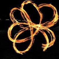 Огненный цветок :: Елена Федотчева